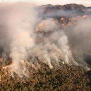 Se combaten 5 incendios forestales en SLP